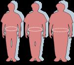 300px-obesity-waist_circumference-svg