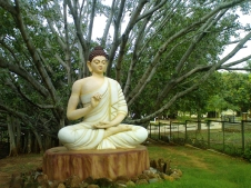 8 Statue of Lord Buddha amidst the Golf Course