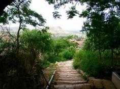 Scenic walk 04